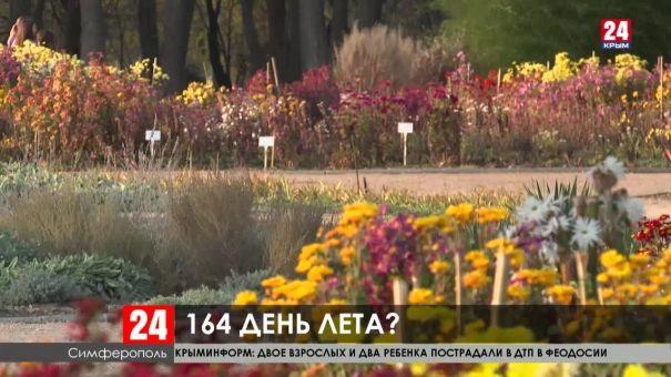 Крым бьет тепловые рекорды. Аномальна ли такая погода?