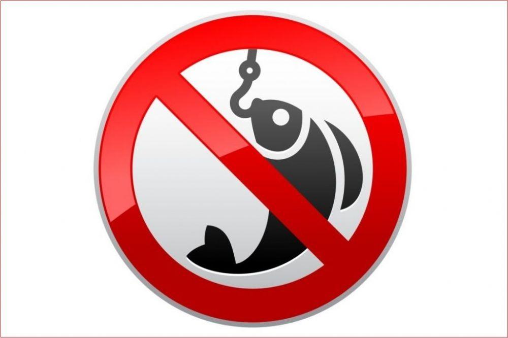 Запрет на рыбалку в районах зимовки рыбы