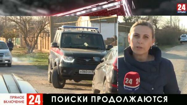 Вторые сутки 400 человек ищут пропавшую в Раздольненском районе девочку