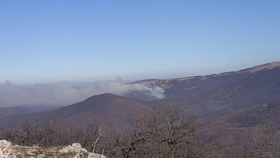 Геннадий Нараев: Принимаются все меры по локализации пожара в Перевальненском участковом лесничестве