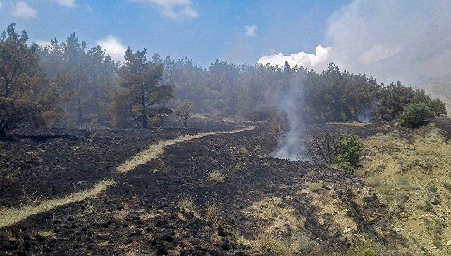 В Симферопольском районе объявили режим ЧС из-за пожара