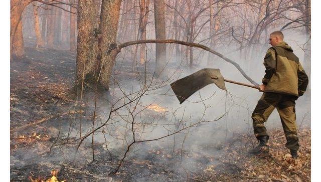 В Крыму продолжается борьба с крупным пожаром, нужны волонтеры