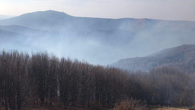 Крупный пожар в горах Крыма: что известно на данный момент
