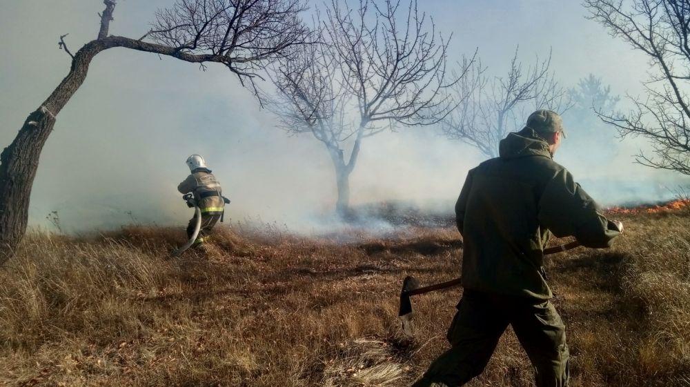 Огнеборцы ГКУ РК «Пожарная охрана Республики Крым» продолжают вести ежедневную борьбу с возгораниями сухой растительности