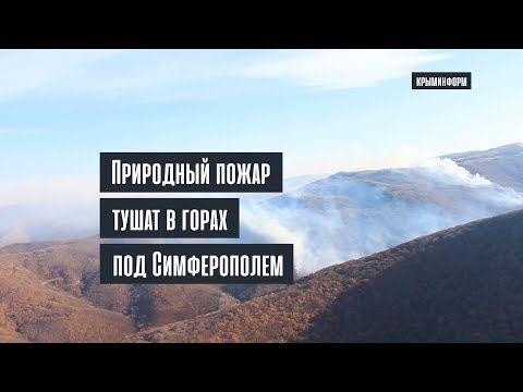 Лесной пожар под Симферополем локализован на площади более 50 га