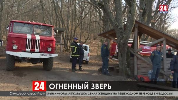 Горит лес в Симферопольском районе. Наш корреспондент принял участие в спасательной операции