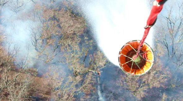 Спасатели потушили лесной пожар под Симферополем