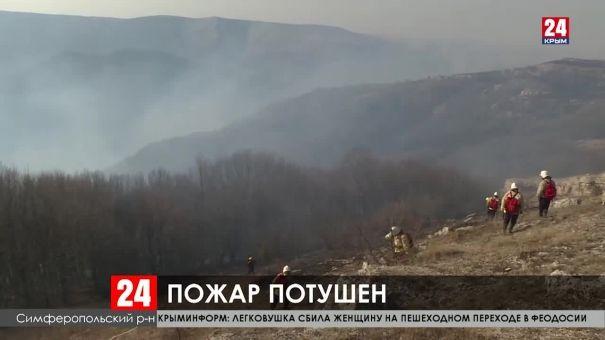 В Симферопольском районе ликвидирован лесной пожар
