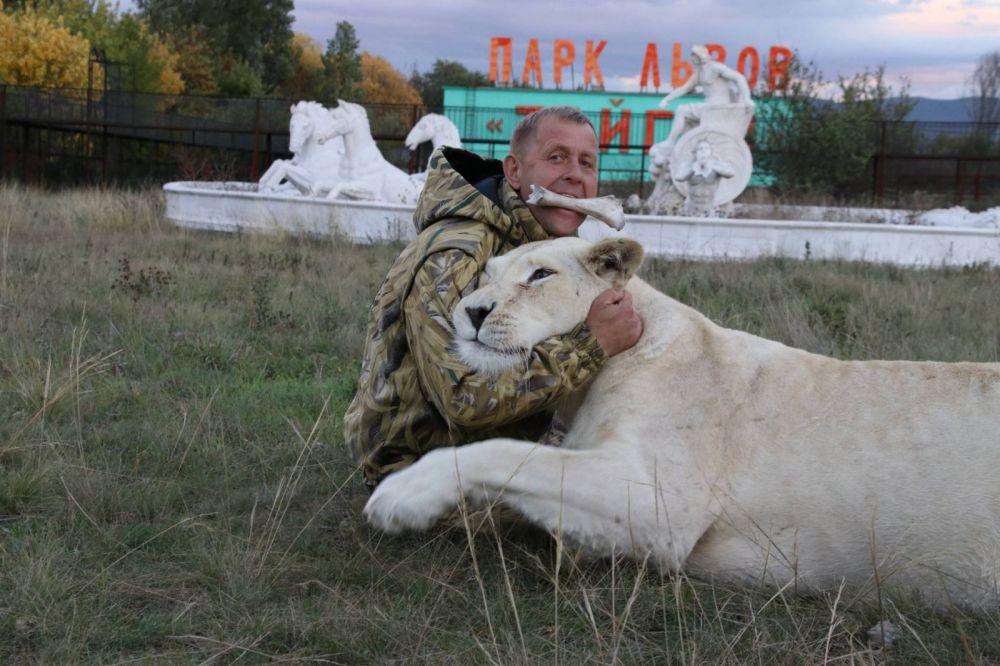 Госкомветеринарии РК настаивает на временном закрытии парка львов «Тайган»