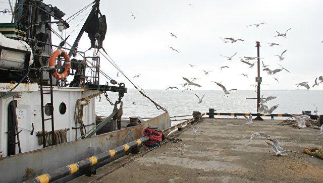 Получит ли Украина компенсации за порты Крыма: мнение юриста