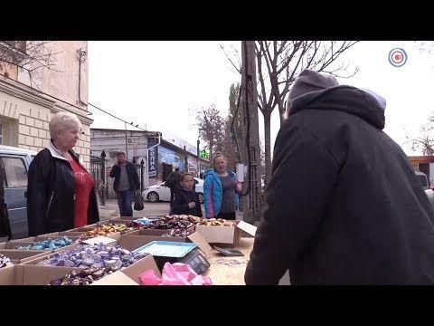 За незаконную торговлю в Севастополе оштрафуют двух продавцов