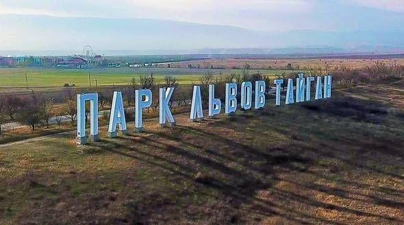 Ветеринарная служба Крыма ответила на приглашение Путина в парк «Тайган»