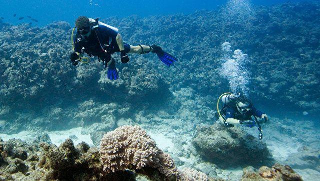 Крымские археологи начали проводить подводные исследования в Сирии