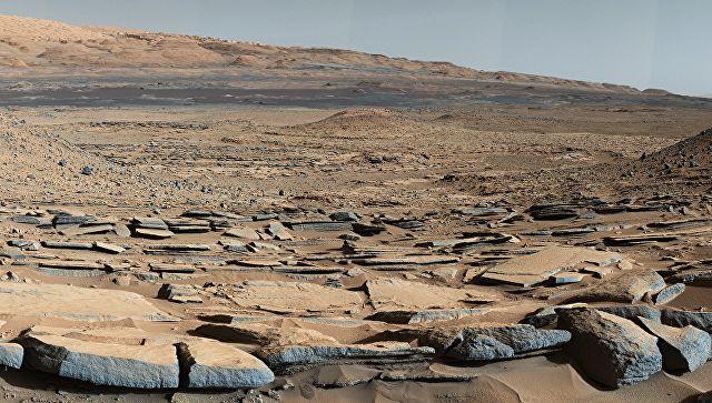 Ученый нашел на Марсе насекомых, но не все коллеги ему верят
