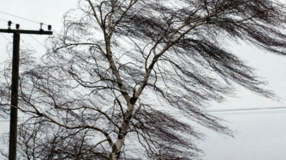 В результате прохождения штормовых условий, в учебном заведении в г. Джанкой, ветром сорвало кровлю крыши