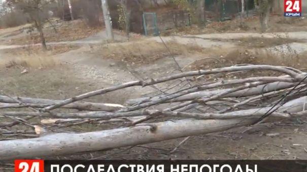 Разбушевавшаяся стихия стала причиной аварий на электролиниях Крыма