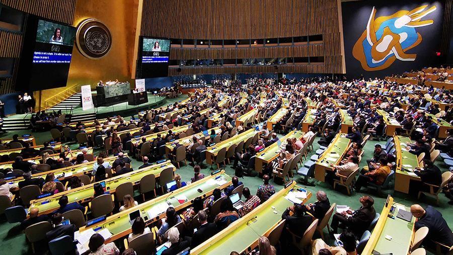 Украинская делегация на форуме ООН в Женеве пыталась «засвистать» и «застучать» тему Крыма