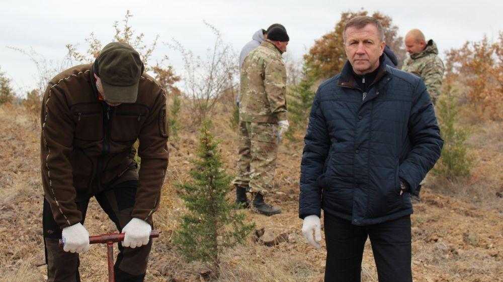 В Крыму в рамках нацпроекта «Экология» высажено 222,1 га лесных культур