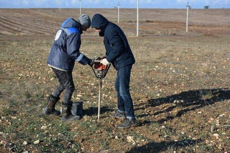 В Севастополе проверяют качество сельхоз земель