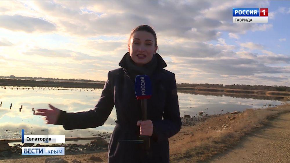 В Крыму планируют реконструировать грязелечебницы мирового значения