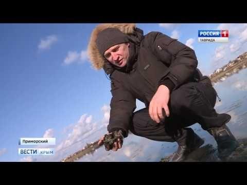 Крымские грязелечебницы мирового уровня подвергнутся реконструкции