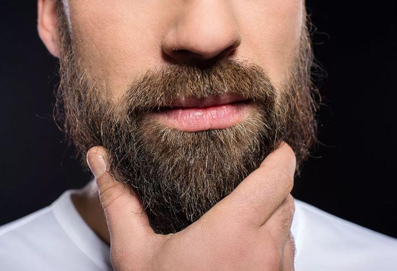 Бородачам советуют забыть о моде и побриться до весны
