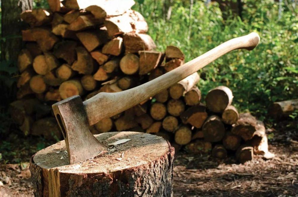 Севастопольская пенсионерка убила сожителя за нежелание колоть дрова