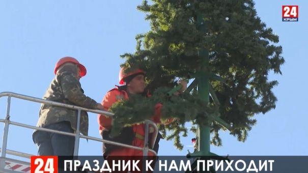 В Симферополе устанавливают 25-метровую ёлку