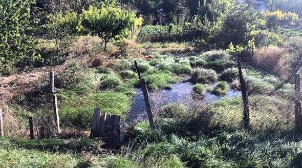 Минприроды Крыма выявило в Симферопольском районе загрязнение земель канализационными водами