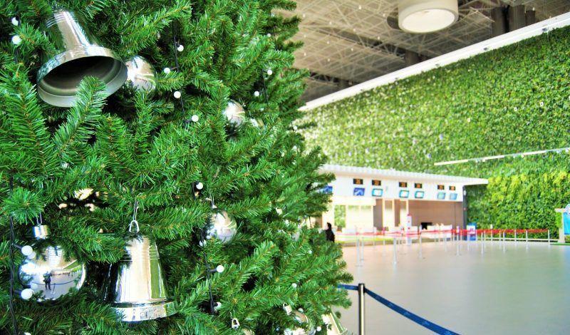 В аэропорту «Симферополь» установили ёлку. Самую высокую в Крыму