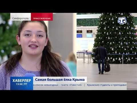 Самая большая ёлка Крыма