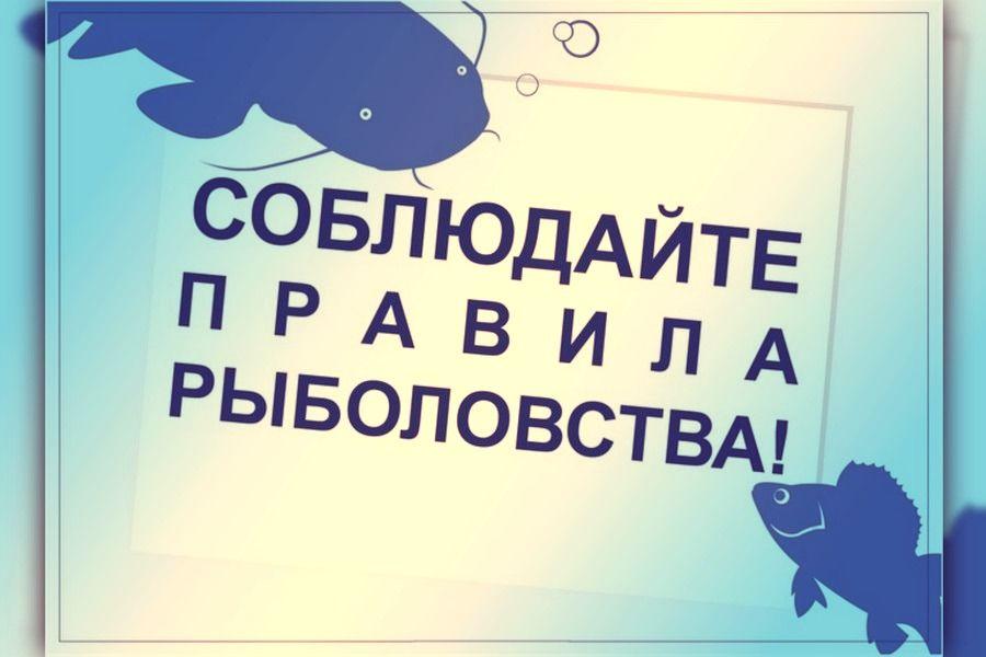 Информация для рыболовов-любителей