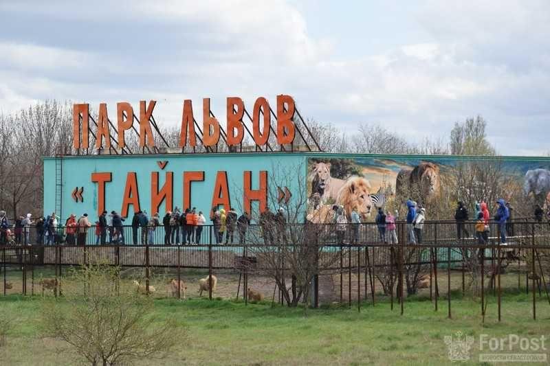 Парк львов «Тайган» в Крыму еще раз закрыли на 30 дней