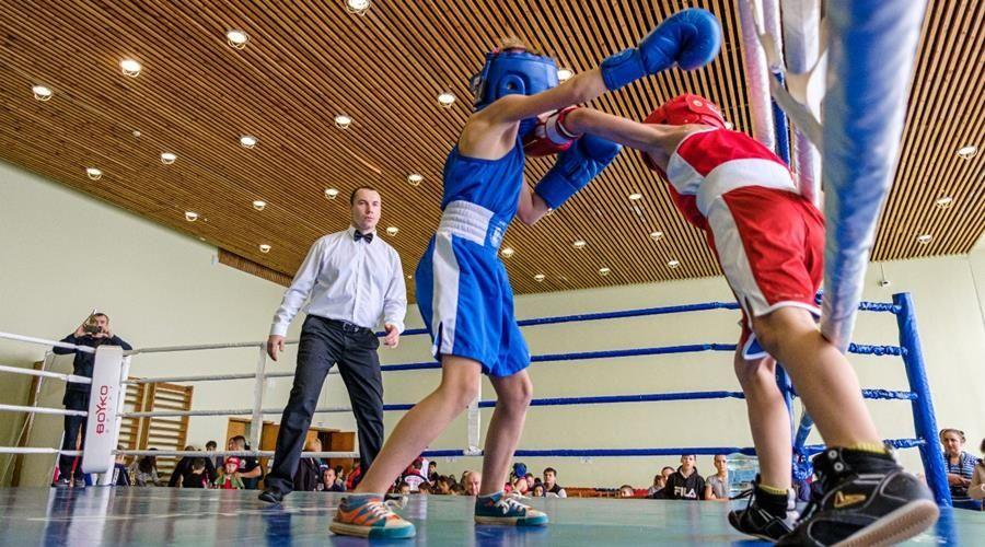 Кубок «Дюльбер-2019» собрал более 200 юных боксеров