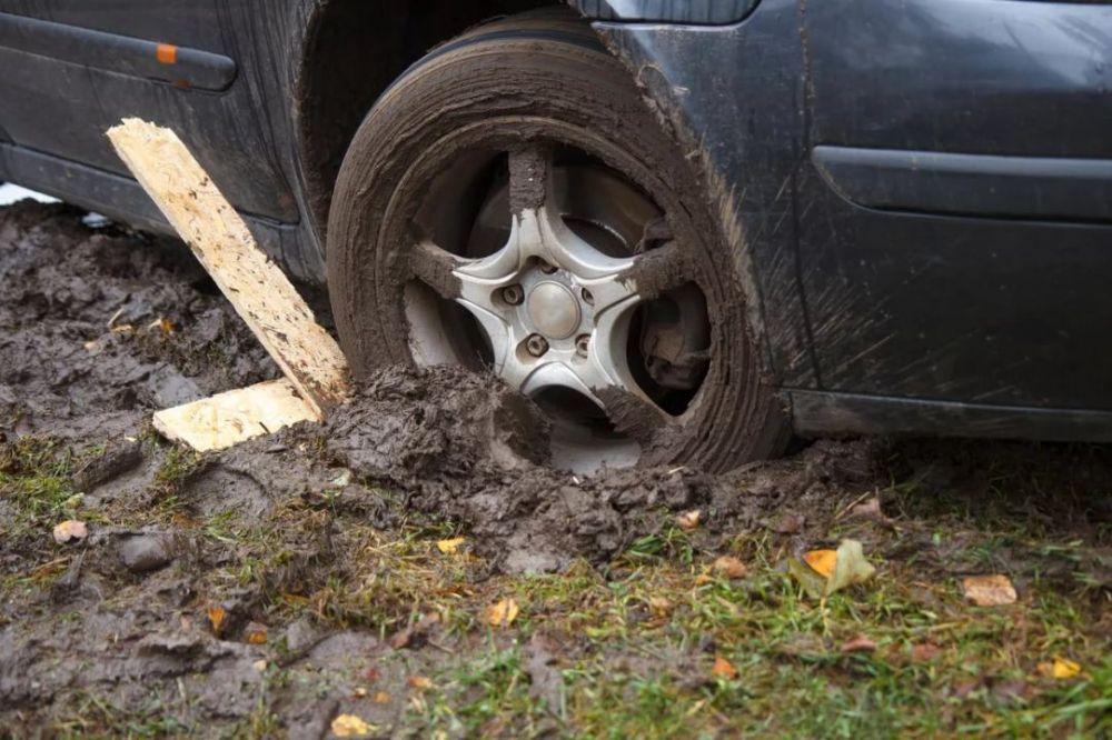 Жители Новосибирска застряли на лесной дороге в Крыму