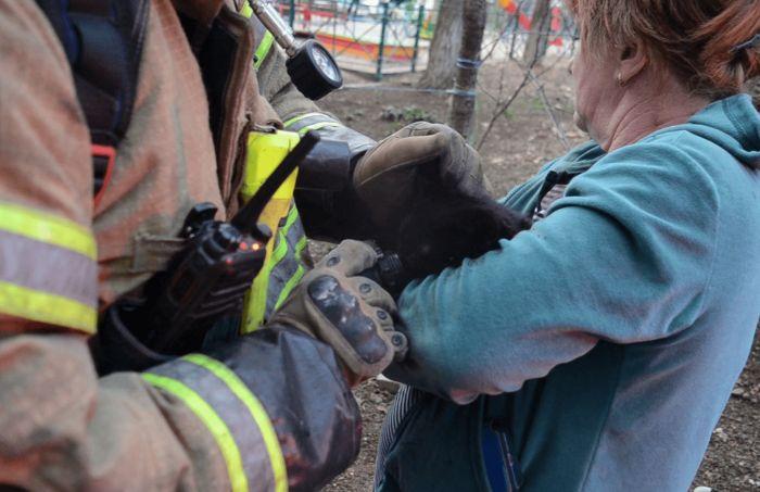 Пожар в Севастополе: на улице Горпищенко спасали и людей, и животных