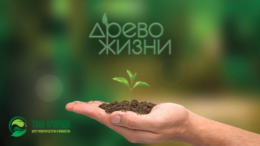 Минприроды Крыма информирует о проведении IX Открытого межрегионального экологического фестиваля «Древо жизни»