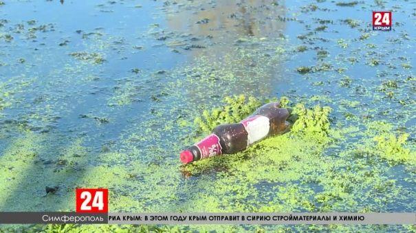 В Симферополе ищут деньги на очистку Даниловского пруда