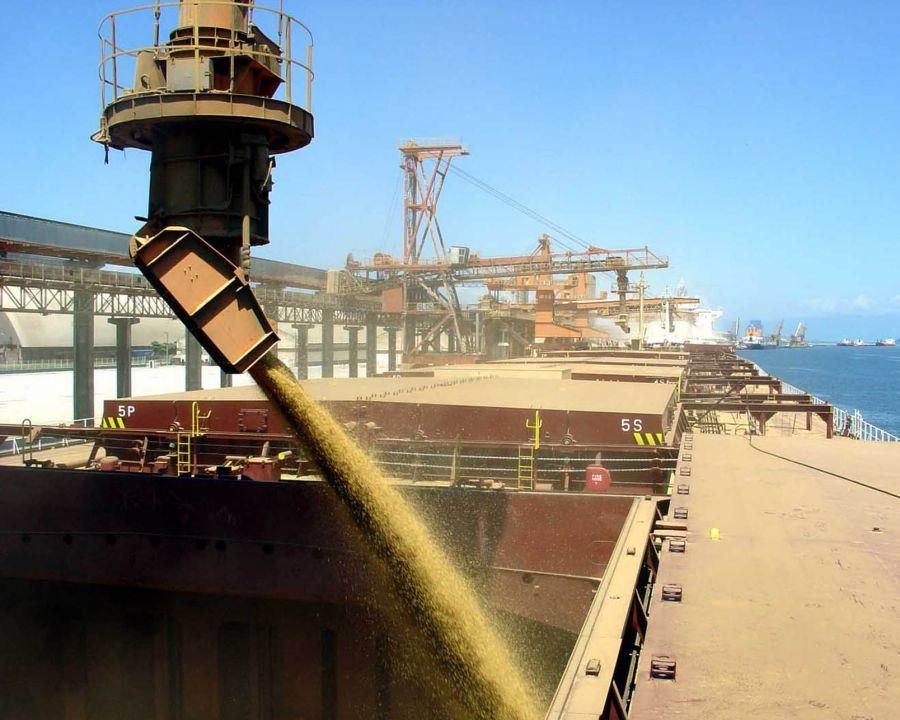 Через порты Крыма в Сирию будут поставлять зерно и подсолнечное масло