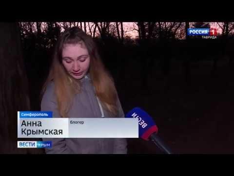 Симферопольские волонтёры спасли собаку от хозяев-живодёров
