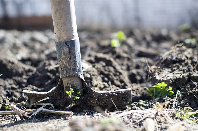 В Крыму пенсионер закопал новогоднего гостя на огороде