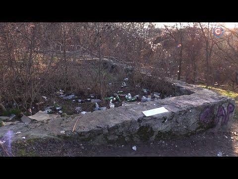 Власти взяли на контроль санитарное состояние Ушаковой балки