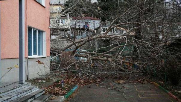 Ураган обрушился на Ялту
