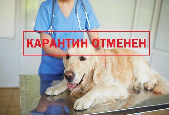 В Севастополе сняты ограничительные мероприятия по бешенству в одном из ГК