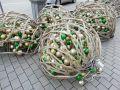СевСети #910: Пробитый троллейбус и инопланетные яйцекладки Севастополя
