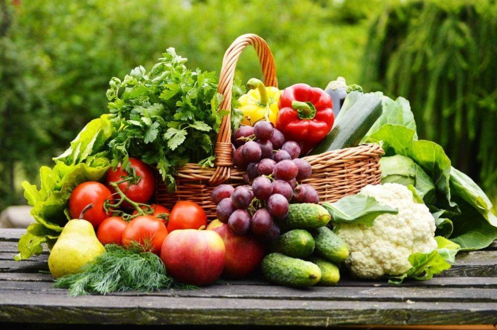 Переподготовка по организации крестьянского (фермерского) хозяйства