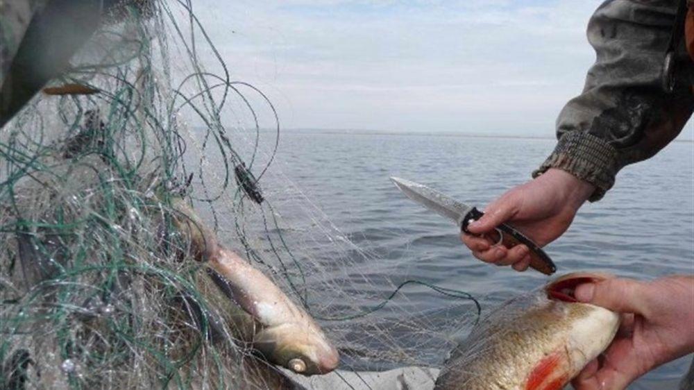 В акватории Черного моря пойманы браконьеры