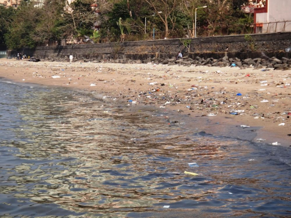 Обнаружены самые грязные пляжи Крыма, отпугивающие туристов