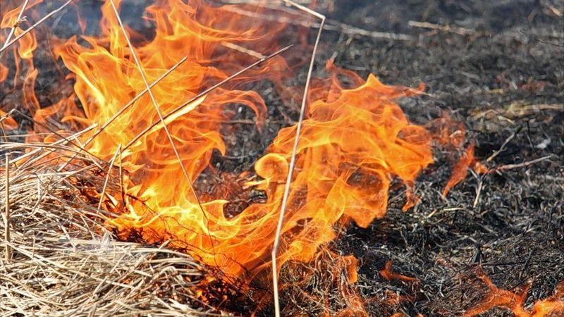 Сотрудники ГКУ РК «Пожарная охрана Республики Крым» продолжают вести борьбу с возгораниями сухой растительности