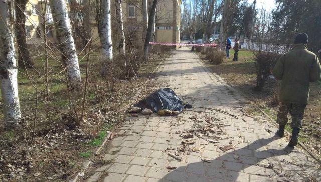 СК возбудил дело после гибели мужчины из-за упавшего дерева в Керчи